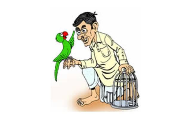 చిలుకల మాటలు   words of parrots