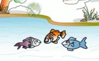 Mudu Chepala Katha   Three Fishes Story in Telugu